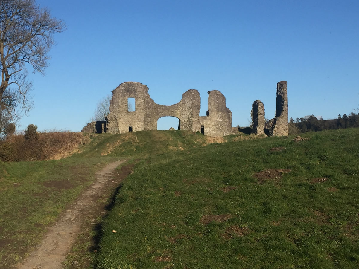 View of the Castle at Newcastle Emlyn